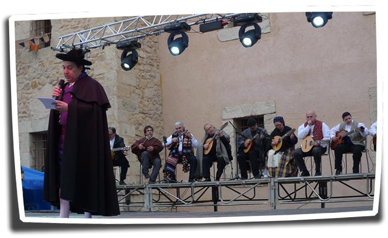 Fireta St.Antoni-22i23-01-2011 (268) copia
