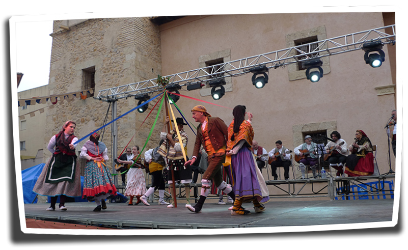 Fireta St.Antoni-22i23-01-2011 (272) copia