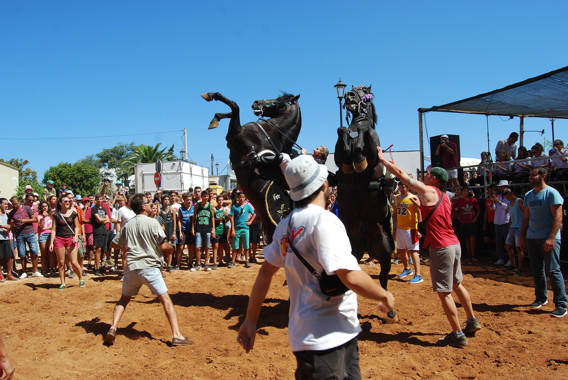 2014-08-15al17 BALADRE a Ferreries PepV.Cavalls (413)